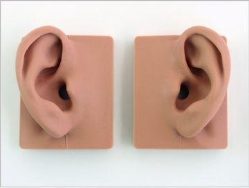 type2130_ear